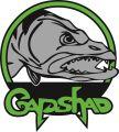 Gapshad