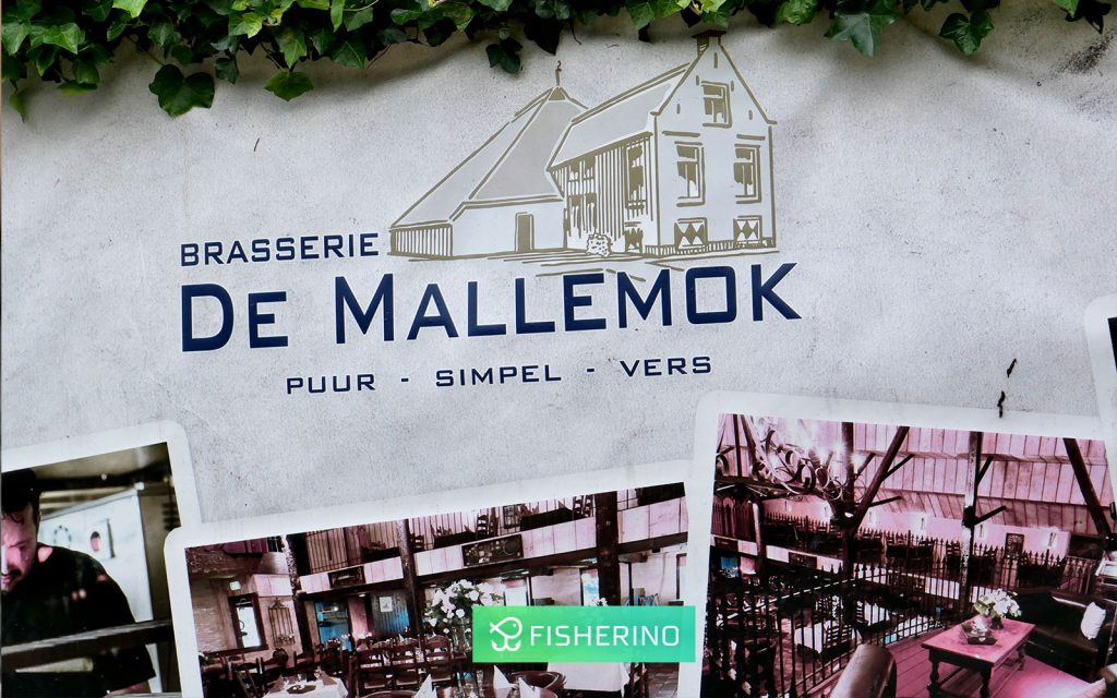 urlaub-holland-rheinlandboote-fisherino-1024x640