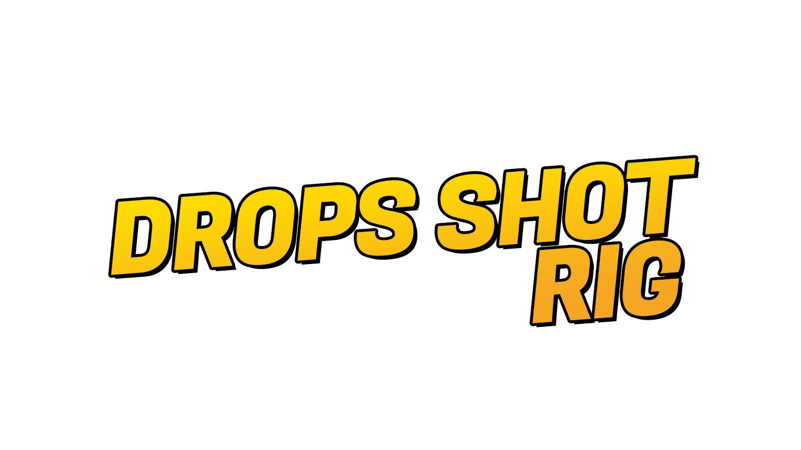 Drops Shot Rig