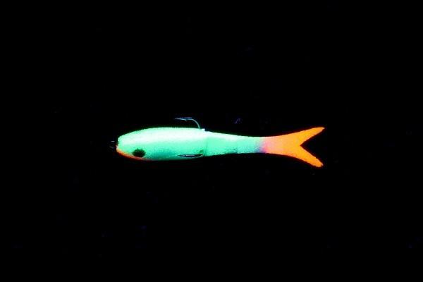 Porolon-Fische
