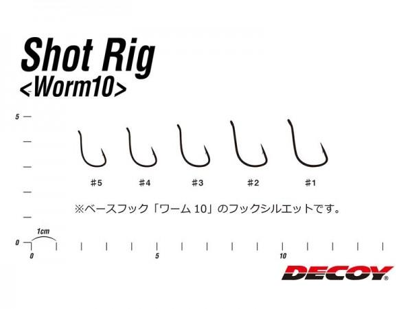 Shot Rig Worm10
