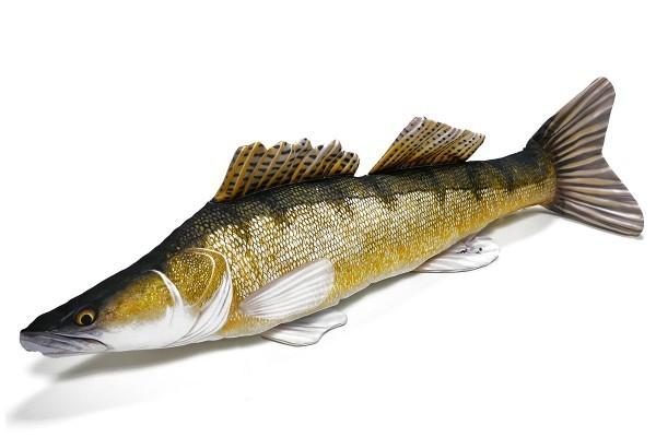 Stofffisch Zander