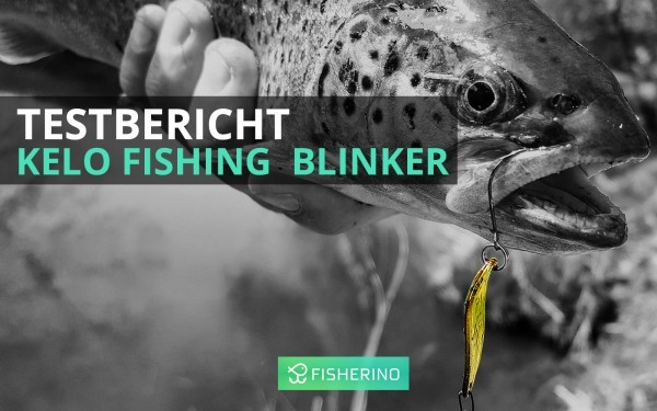 titel_fisherino