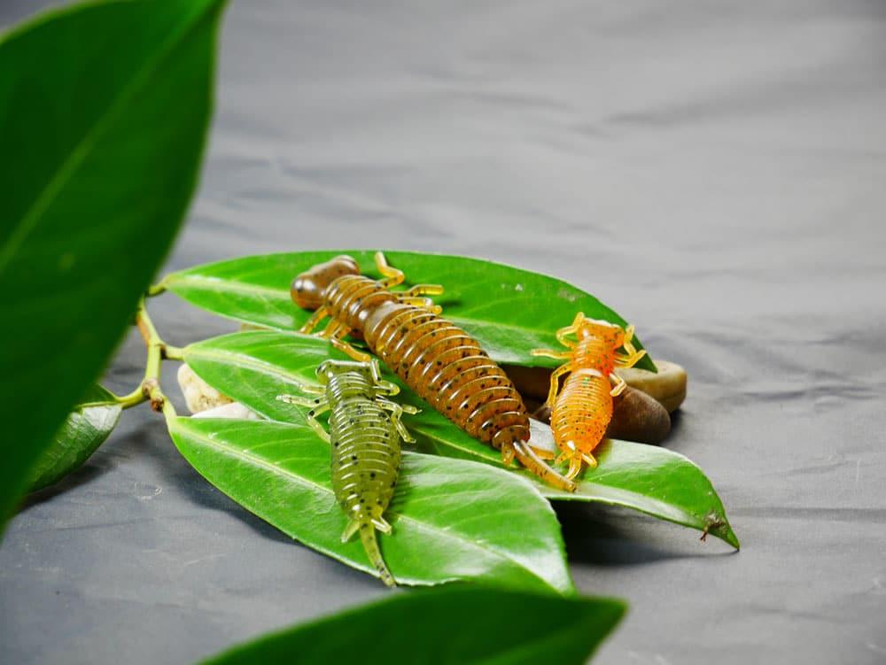 fanatik-larva-boxer-raidertryTiFAF4nIez