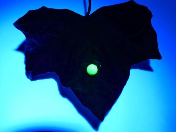 Cheburashka Tungsten UV